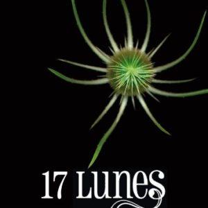 17 Lunes – Tome 2 – Kami Garcia – Margaret Stohl – Le livre de poche jeunesse –