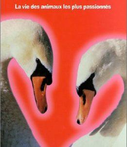 «Les amoureux» – La vie des animaux les plus passionnés – Collectif – Éditions le petit musc – D.L. Mars 2002 –